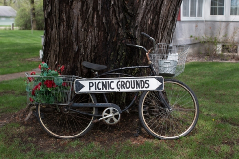 bike basket picnic grounds road sign tree